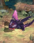 TU-Shadow Skrill-Hatchling-4