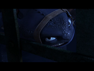 Toothless(71)