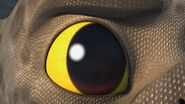 BE - Close up of Cutter's eye