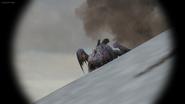 Eruptodon 38
