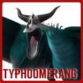TyphoomerangPortal