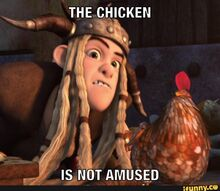 The chicken is not amused