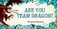 HTFADF Team Dragon