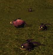 Hobgobblers with Hobgobbler Sheep 3