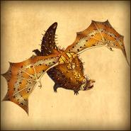 Dragons ubu adult