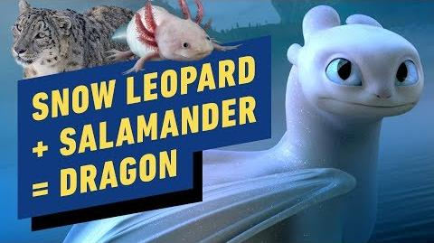 How to Train Your Dragon The Animals That Inspired a New Dragon