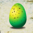 Green Common Garden Egg