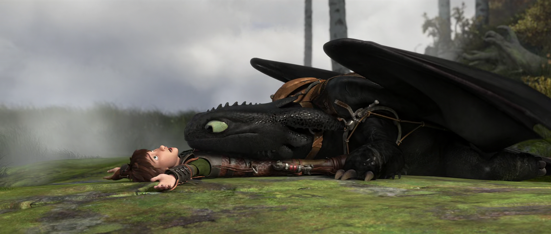 characters watch how to train your dragon 2 fanfiction
