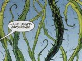 Dragonvine (Plant)