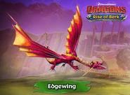 Edgewing ROB