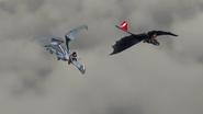 Flyingpractice