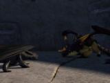 Dragon Fighting
