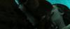 640px-Stalka