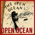 OpenOceanPortal