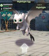 DP White NightLight Flying