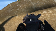 Toothless(63)