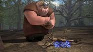 Buckthorn 5