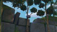GOH - The rock hitting a tree