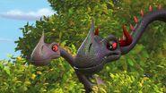 HA - The slinkwings keeping an eye on the roost