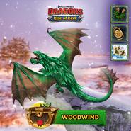 ROB-Woodwind Ad