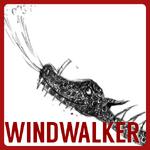 WindwalkerCharacterPortal
