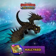ROB-Halcyard Ad