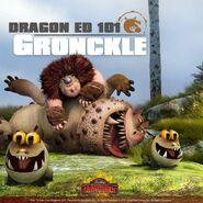 Dragon Ed 101 Gronckle
