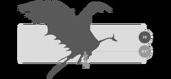 Dragons silo typhoomerang