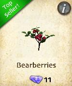 Bearberries