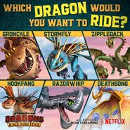 Which dragon rttes6 promo
