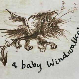 Windwalker bebé