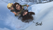 Bobsled 15