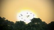 Hoard of Singetails
