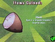 HTTYDgame-Ham2