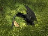 Dragon Nip (Franchise)