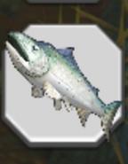 Salmon Icon