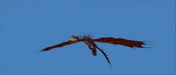 CGI Nightmare Physics of Flight 4 Animators Corner