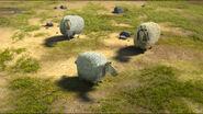 Animal House-Sheep1-3