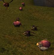 Hobgobblers with Hobgobbler Sheep 1