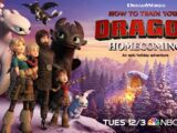 Gallery: How to Train Your Dragon: Homecoming