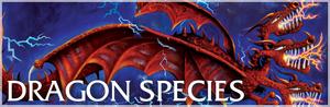 DragonSpeciesBookPortal