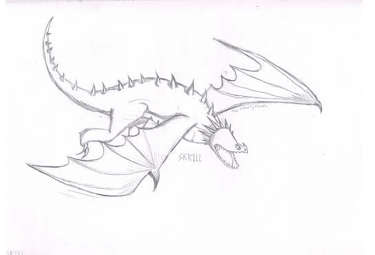 Image  My Drawing of a Skrillpng  How to Train Your Dragon Wiki