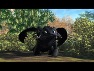 Toothless(37)