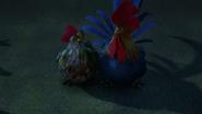 Chicken's Mate 3