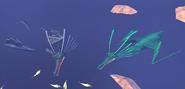 Tide Gliders