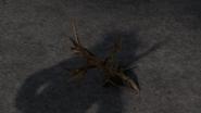 Buckthorn 2