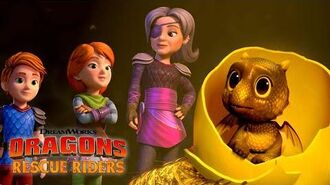 Finding a Dragon Baby DRAGONS RESCUE RIDERS HUNT FOR THE GOLDEN DRAGON