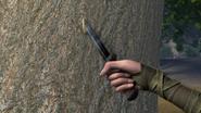 NoDragonLeftBehind-Pine2