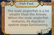 SOD-Anglerfish2