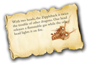Dragons bod zippleback info-1-